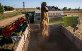 Размер экспортной пошлины на пшеницу составит 15% плюс €7,5