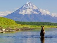 Россия: туристические итоги 2014 года