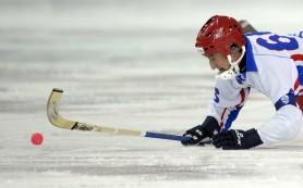 Мужской чемпионат мира по хоккею с мячом в 2017 году пройдет в Швеции