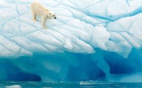 Россия должна увеличить инвестиции в Арктику, если не хочет ее потерять