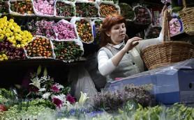 Россия предложила приостановить сертификацию голландских цветов