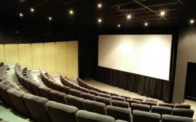 Фестиваль индийского кино откроется в Москве