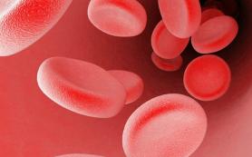 Кровотечения научились останавливать при помощи «самоходных» частиц