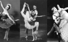 Взгляд на искусство танца демонстрирует выставка «Истории русского балета»