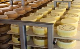 Россельхознадзор разрешил поставки сыра и мяса с восьми предприятий Швейцарии
