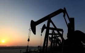 США признали факт контрабанды нефти из САР в Турцию
