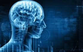 Ученые выяснили, как прошлый опыт влияет на нашу память