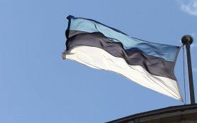 В Эстонии участились нападения на иностранных студентов