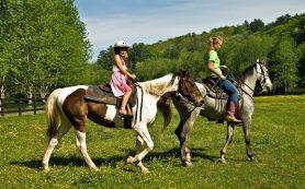 Ростуризм займётся сельским и экотуризмом