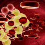 Интеллект человека можно улучшить с помощью холестерина