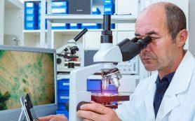 Медики разработали сенсор-имплантат для отслеживания работы мышц и нервов человека