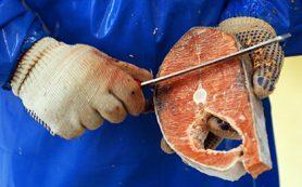 Российскую рыбу и сахар сочли неконкурентоспособными в рамках ВТО