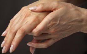 Медики рассказали, почему у человека 5 пальцев на руках