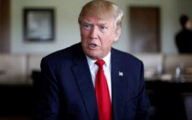 Трамп: Миллионы американцев голосовали на выборах незаконно