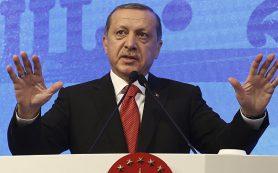 Эрдоган подписал закон о ратификации соглашения по «Турецкому потоку»