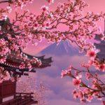 Япония и Россия упрощают получение виз
