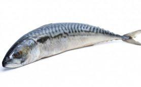 Эксперты рассказали, какой рыбы следует избегать беременным женщинам