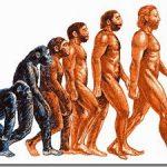 В Турции теорию эволюции Дарвина убрали из школьной программы