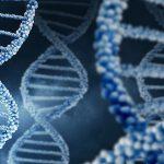 Ученые выявили 18 новых генов, связанных с аутизмом