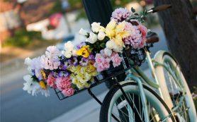 Флористические композиции с доставкой по Полтаве
