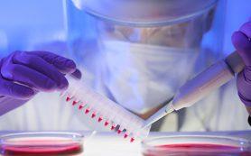 Российские физики научили ультразвук находить и убивать раковые клетки