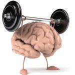 Мозг растёт дольше, чем считалось