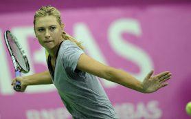 В Германии Шарапова вернется на корт после дисквалификации за мельдоний