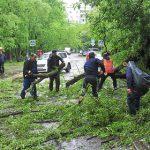 Пучков похвалил экстренные службы за работу при урагане