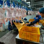 Россельхознадзор запретил ввоз продукции четырех белорусских предприятий