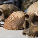 Ученые: предки современного человека жили на 150 тыс. лет раньше, чем предполагалось