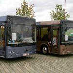 Калининград закупит автобусы МАЗ к ЧМ-2018