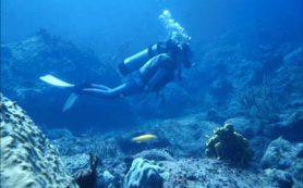 Подводное плавание может повредить зубы