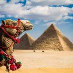 «Когда откроют Египет?» Новые серии