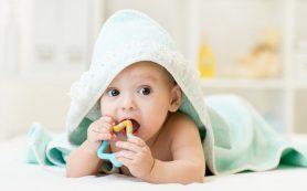 Младенцы познают мир губами