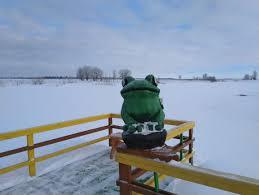 В Тверской области открылся Музей лягушки