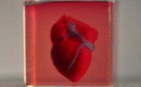 Ученые из Израиля напечатали первое 3D-сердце, используя клетки пациента