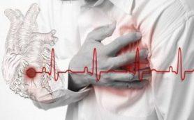 В ИМБ РАН выяснили, как защитить клетки сердца от гибели при развитии ишемии или инфаркта