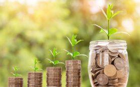 Минэк: финансовую устойчивость туроператоров необходимо улучшать