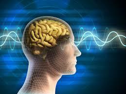 Электричество омолаживает мозг