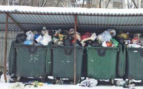 ЛДПР: проблема с вывозом мусора в Брянске следствие политической монополии