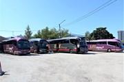 Lux Express: «Российские пошлины мешают нам открыть автобусные перевозки внутри России»