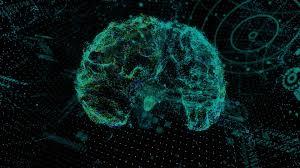 Иммунные сигналы помогают памяти