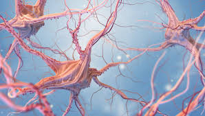 Раковые клетки подключаются к нейронам мозга