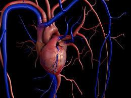 Гидрогель с лекарством против послеоперационной аритмии