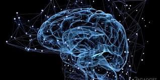 Как радиация вредит мозгу