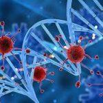 Вирусы крадут у людей куски генетического кода