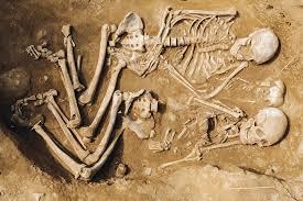 В Бурятии случайно открыто погребение эпохи неолита