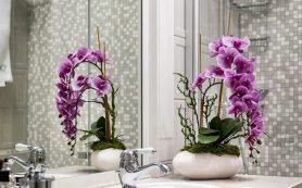 Живые цветы в интерьере ванной комнаты