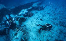 На Мальте запустили виртуальный музей «Подводный мир Мальты»