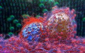 Может ли рак развиваться без мутаций